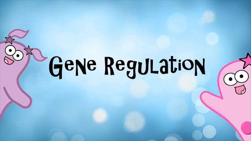 Still image from The Amoeba Sisters: Gene Regulation