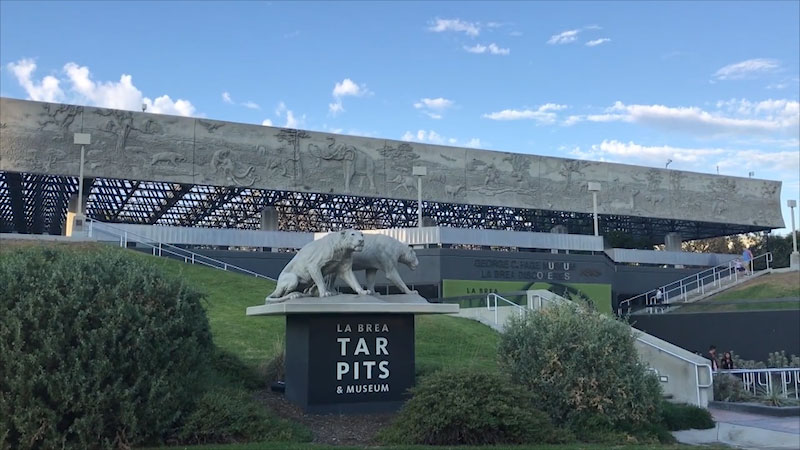 Still image from Museum Access: The La Brea Tar Pits and Museum