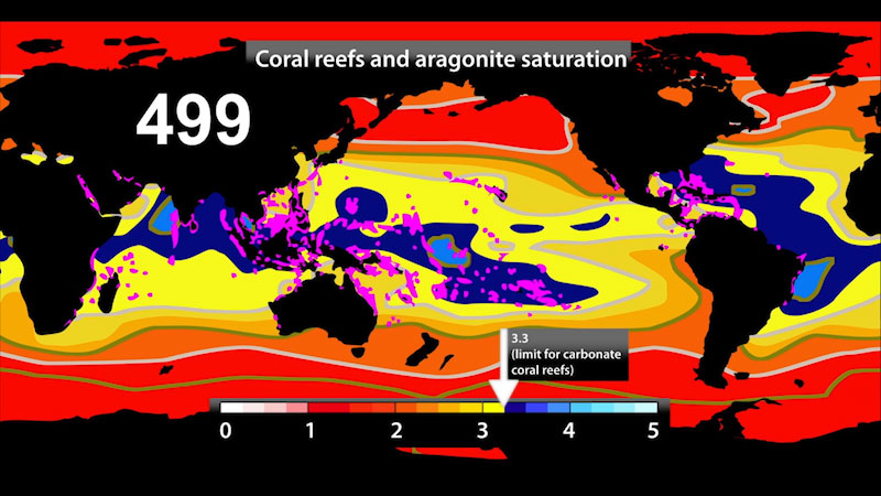 Still image from: Climate Change and Coral Reefs: Coral Acidification (Module 3)
