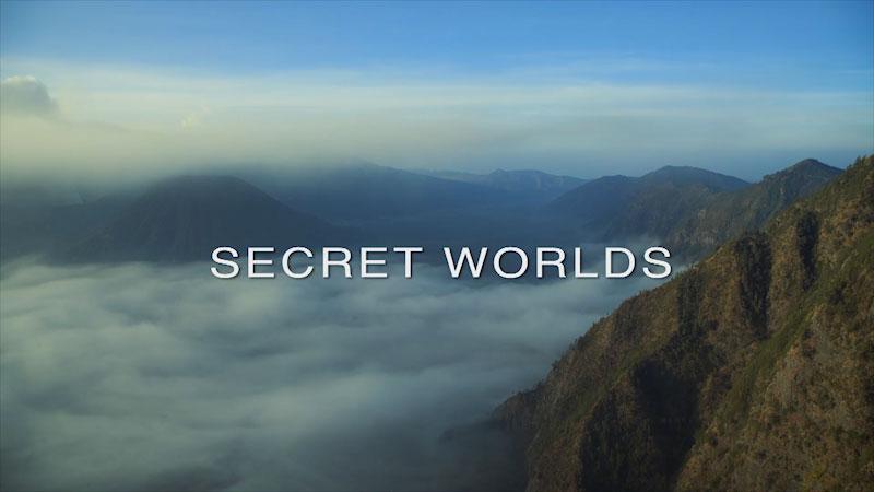 Still image from: Wildest Islands of Indonesia: Secret Worlds