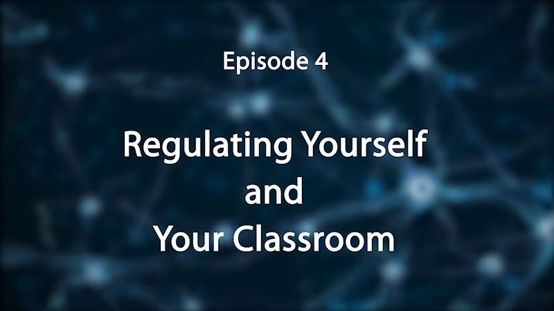 Still image from: Stress, Trauma, and the Brain: Insights for Educators--Regulating Yourself and Your Classroom
