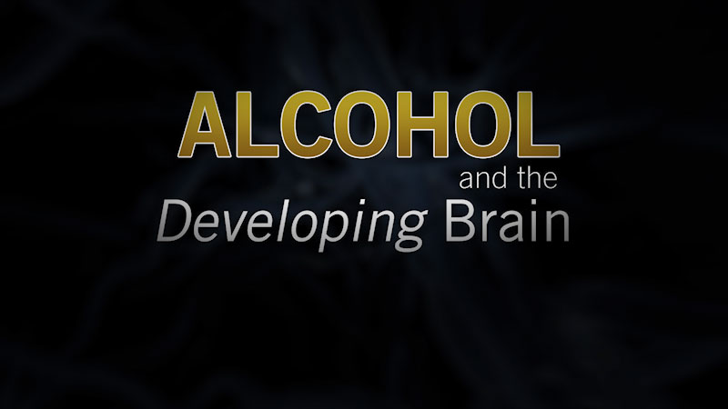 Still image from Alcohol and the Developing Brain