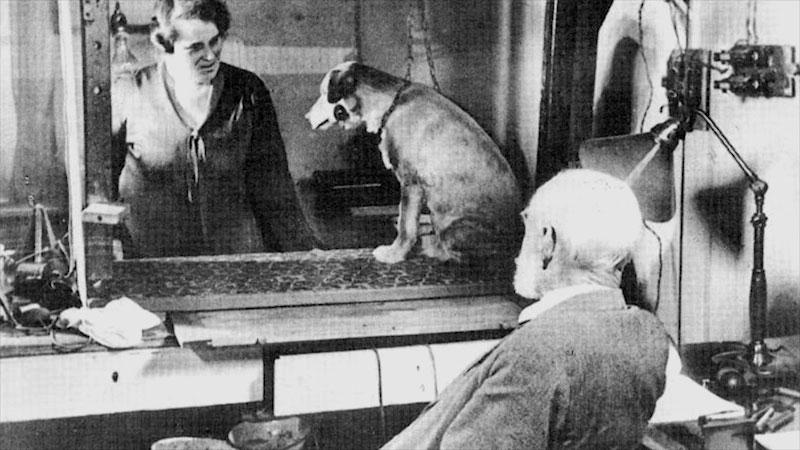 Still image from: Behavioral Science: Origins of Behavioral Science