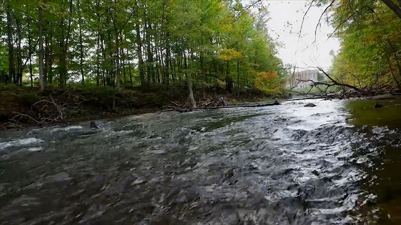 Still image from: Into the Outdoors: The Purpose and Life of a River