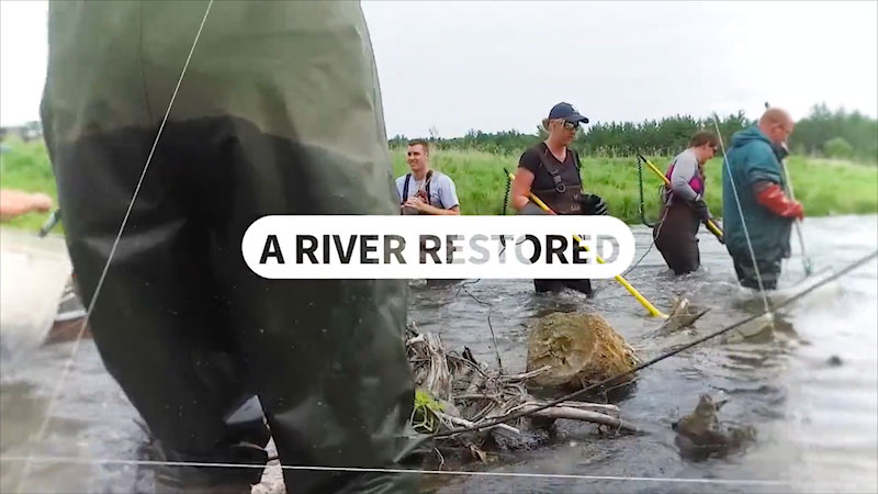 Still image from: Into the Outdoors: A River Restored