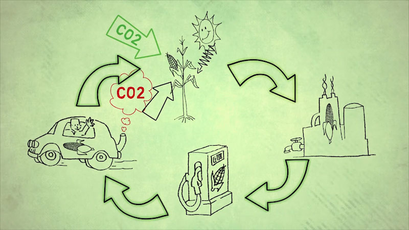 Still image from Into the Outdoors: Exploring Life Cycles of Fuels (Fossil Fuels and Biofuels)