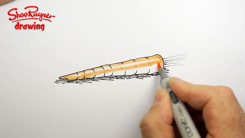 Still image from: How to Draw a Carrot