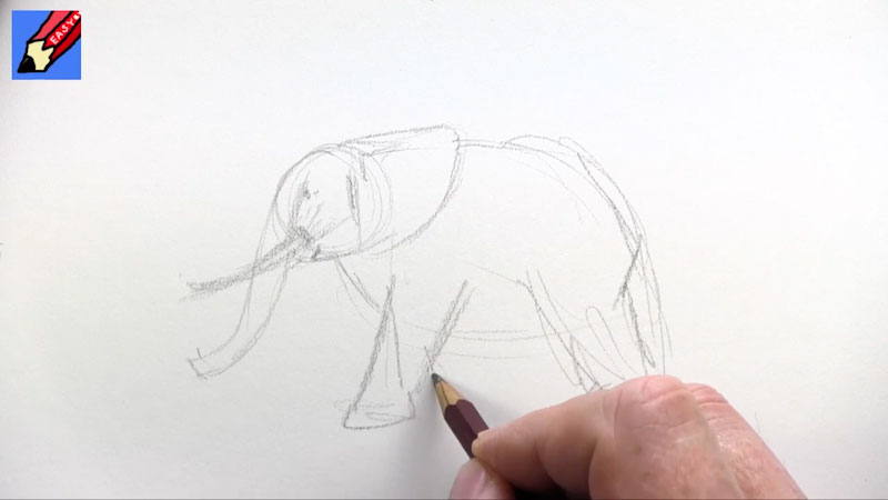 Still image from: How to Draw an Elephant Real Easy