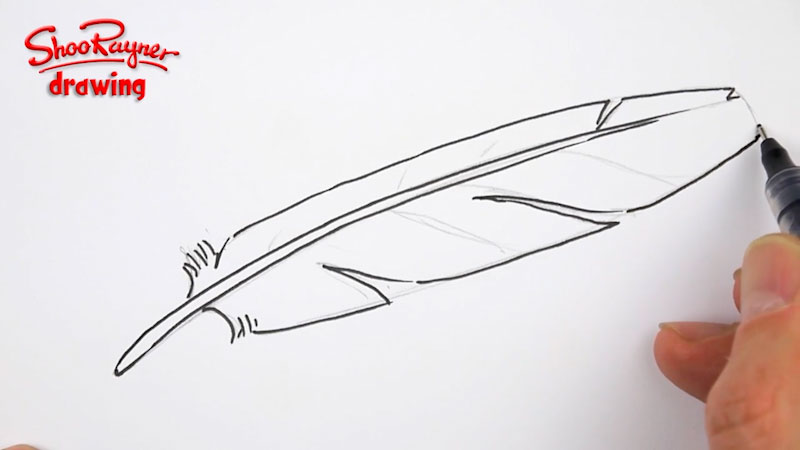 Still image from: How to Draw a Feather