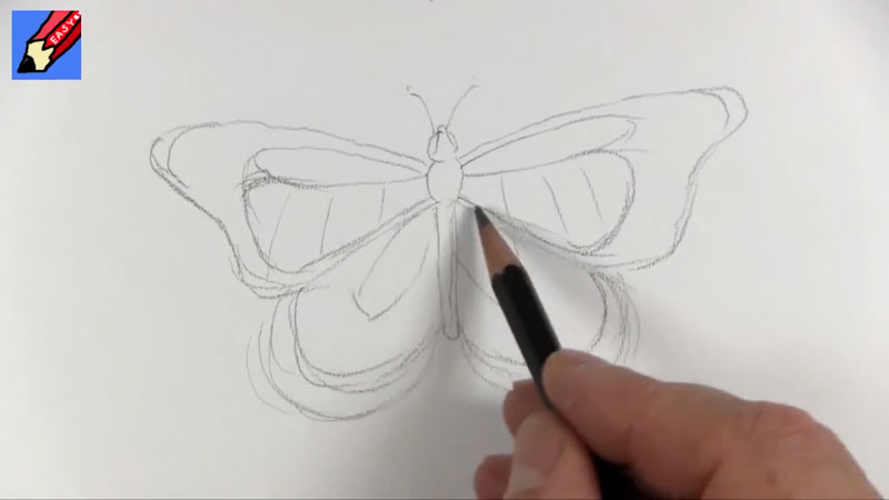 Still image from: How to Draw a Monarch Butterfly Real Easy