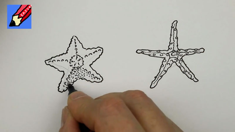 Still image from: How to Draw Starfish Real Easy