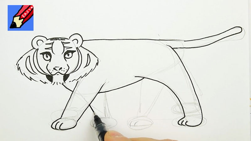 Still image from: How to Draw a Tiger Real Easy