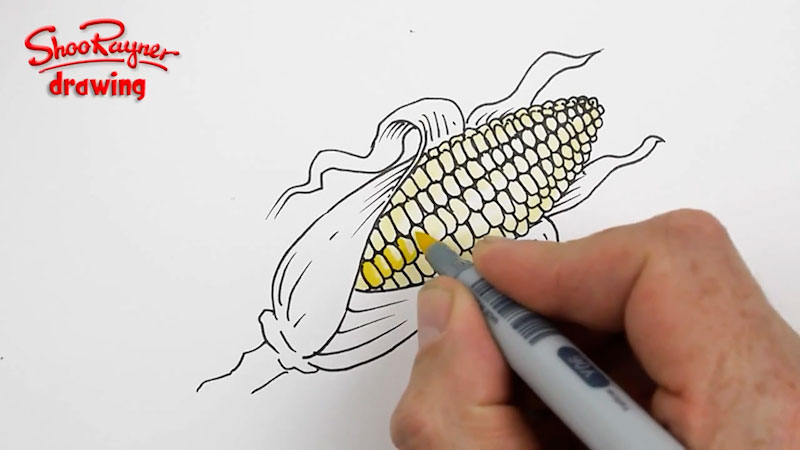Still image from: How to Draw a Corn Cob