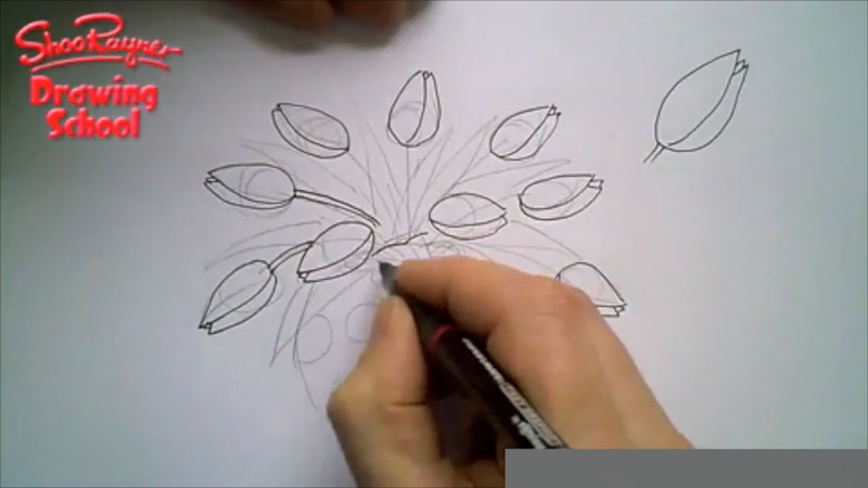 Still image from: How to Draw a Vase of Tulips