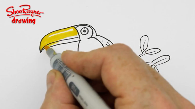 Still image from: How to Draw a Toucan