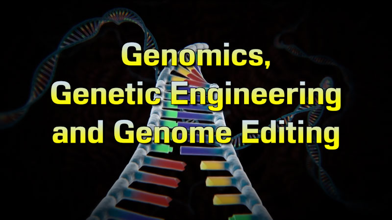 Still image from: Food and Agricultural Science: Genomics, Genetics Engineering and Genome Editing