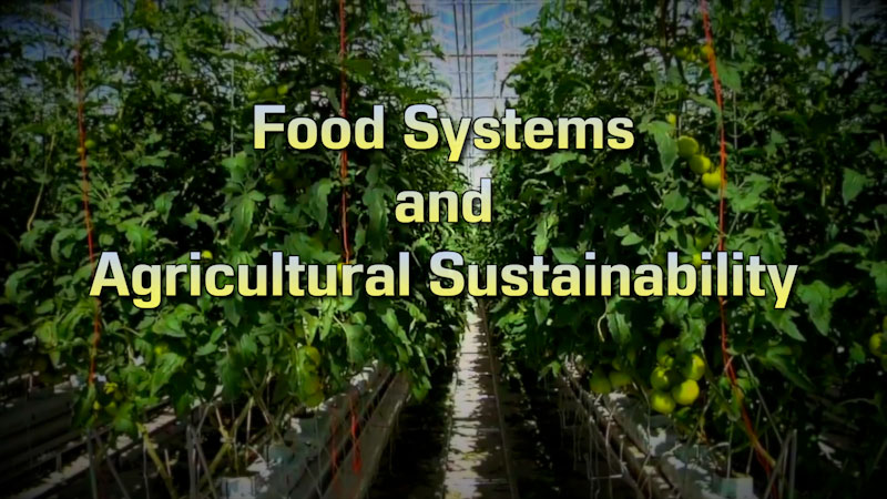 Still image from: Food and Agricultural Science: Food Systems and Agricultural Sustainability