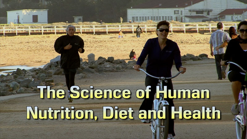 Still image from: Food and Agricultural Science: The Science of Human Diet, Nutrition, and Health