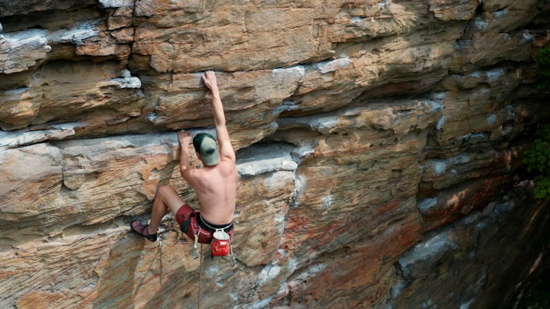 Still image from: Overview: Climber's Paradise Is the Last Refuge for an Ancient Species