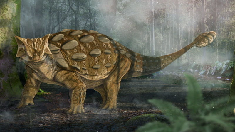 Still image from: Eons: How Ankylosaurs Got Their Clubs