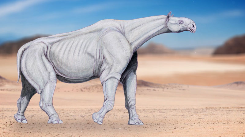 Still image from: Eons: The Rise and Fall of the Tallest Mammal to Walk the Earth