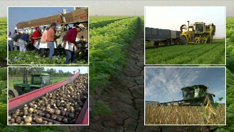 Still image from: Agriculture: Sustainable Farming