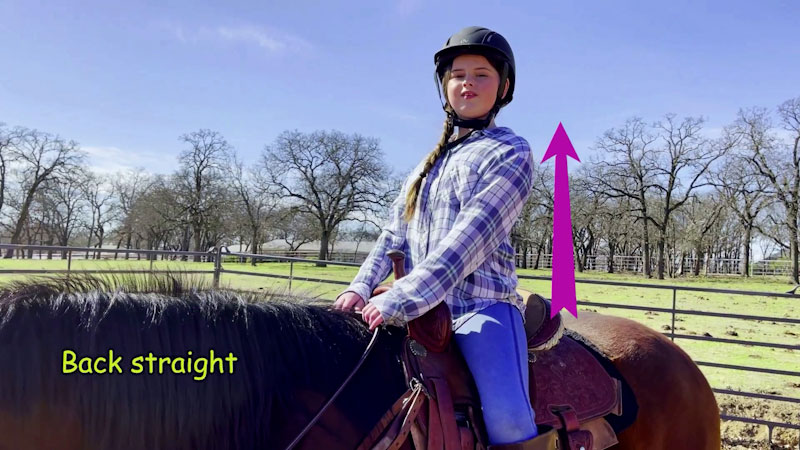 Still image from: Horses for Kids: Learn to Groom and Ride a Horse