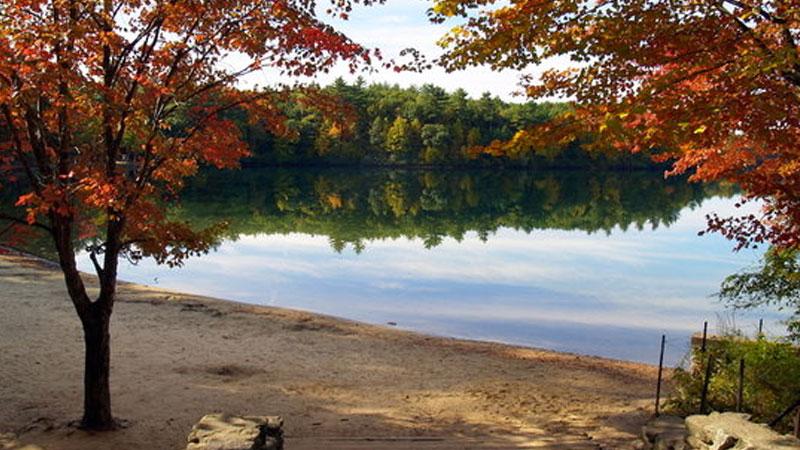 Still image from: Thoreau's Walden