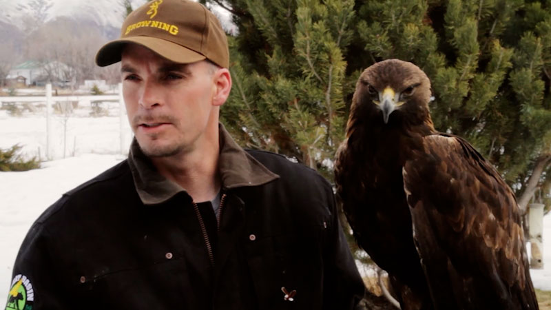 Still image from: Animal Jam: Great Basin Wildlife Rescue Releases an Eagle
