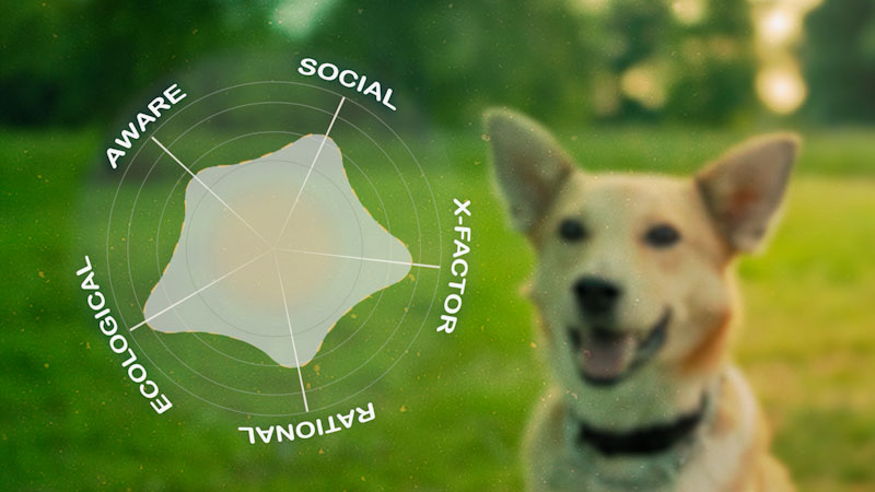 Still image from: Animal IQ: How Intelligent Are Dogs, Really?