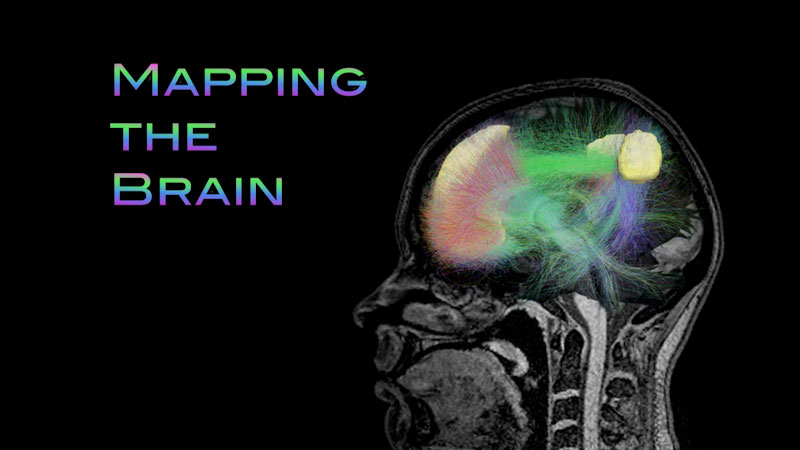 Still image from: Neuroscience: Understanding the Brain--Mapping the Brain