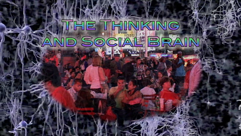 Still image from: Neuroscience: Understanding the Brain--The Thinking and Social Brain