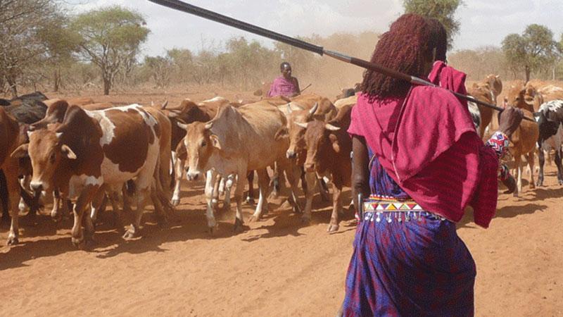 Still image from: Kenya: The Masai Homeland