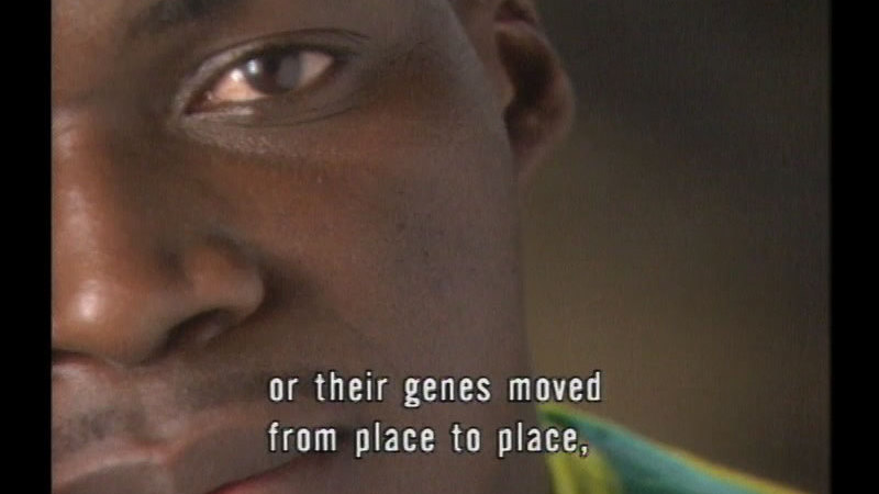 Still image from Race--The Power Of An Illusion: Episode One--The Difference Between Us