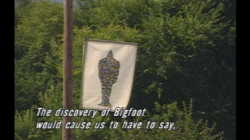 Flag with an image of bigfoot on a pole next to a powerline. Caption: The discovery of Bigfoot would cause us to have to say,