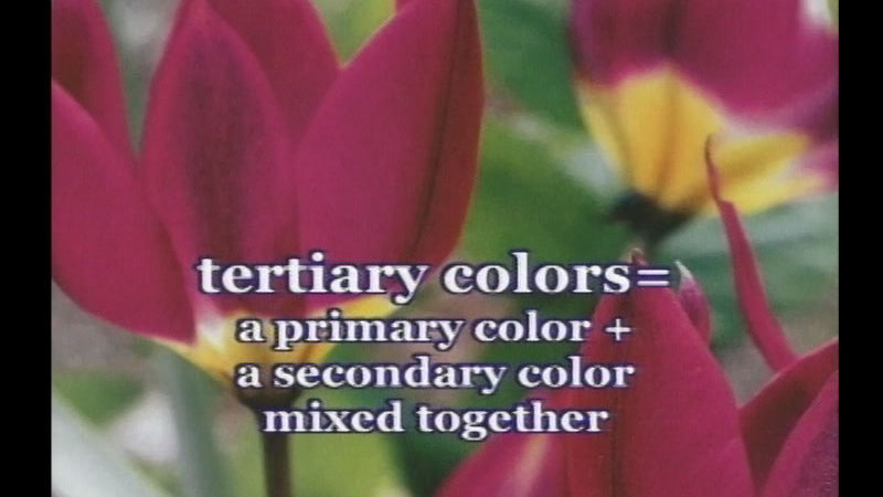 Still image from: The Power of Color