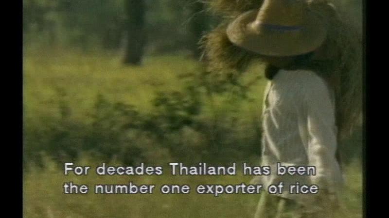 Still image from: Thailand