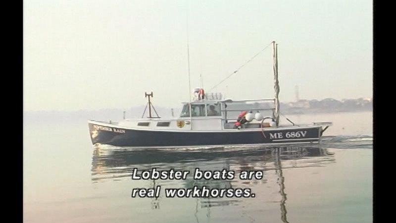 Still image from Let's Go Lobstering!