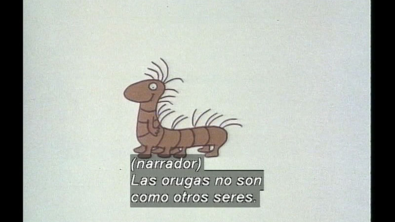 Still image from: The Caterpillar And The Polliwog (Spanish)