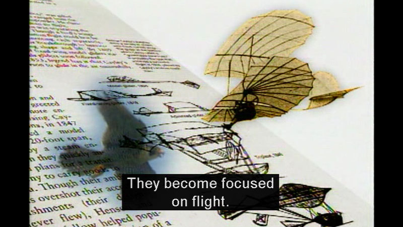 Illustration of a bird and a first-generation plane with ribbed wings. Caption: They become focused on flight.