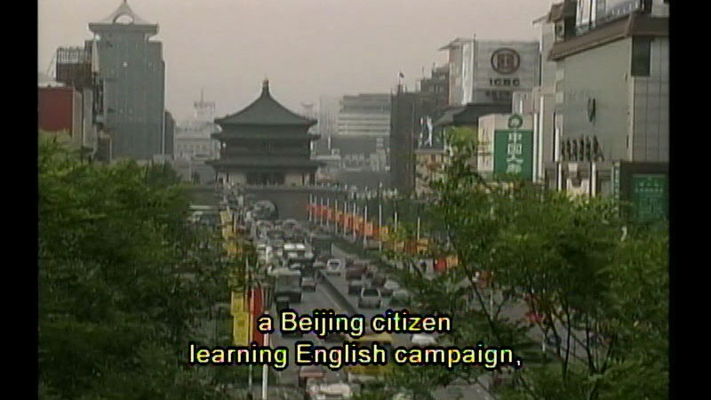 Still image from Speaking In Tongues: The History Of Language--Life And Death