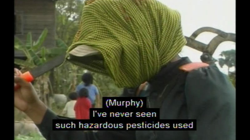 Person with scarf wrapped over their face, carrying a tool on their shoulder. Caption: (Murphy) I've never seen such hazardous pesticides used