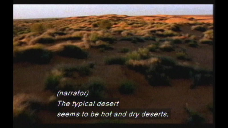 Light brown earth dotted with low lying shrub brush. Caption: (narrator) The typical desert seems to be hot and dry deserts,
