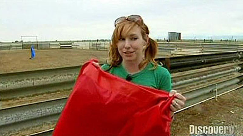 Still image from: Red Rag to a Bull