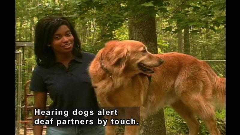 Still image from: Dog Trainer