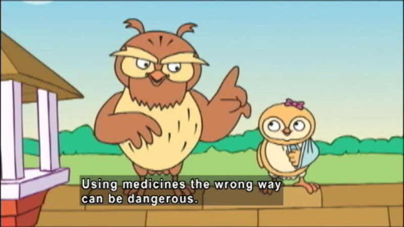 Still image from: Wise Owl's Drug Safety Kit - Part Three: What Is Medicine?