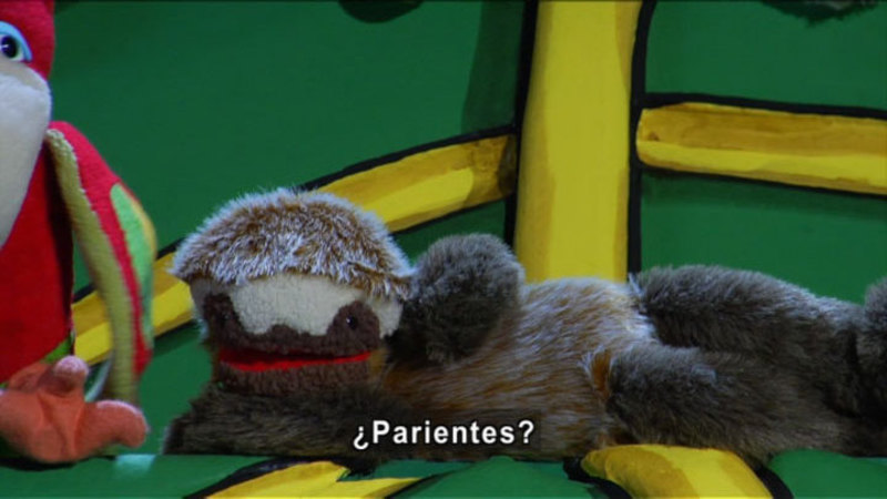 Still image from The Parakeet Show – Laziness (Spanish)