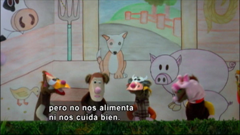 Still image from The Parakeet Show - Animal Rights (Spanish)