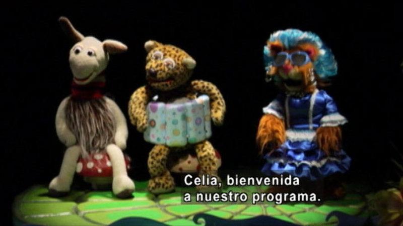 Three animal puppets. Spanish captions.