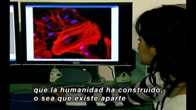 Still image from: Vox Populi-Science (Spanish)